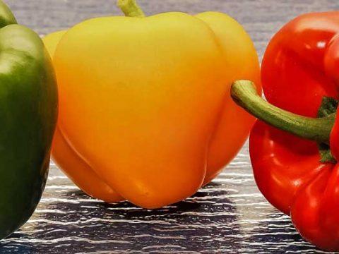 Paprika bereiden