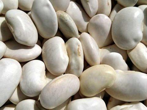 Witte bonen bereiden